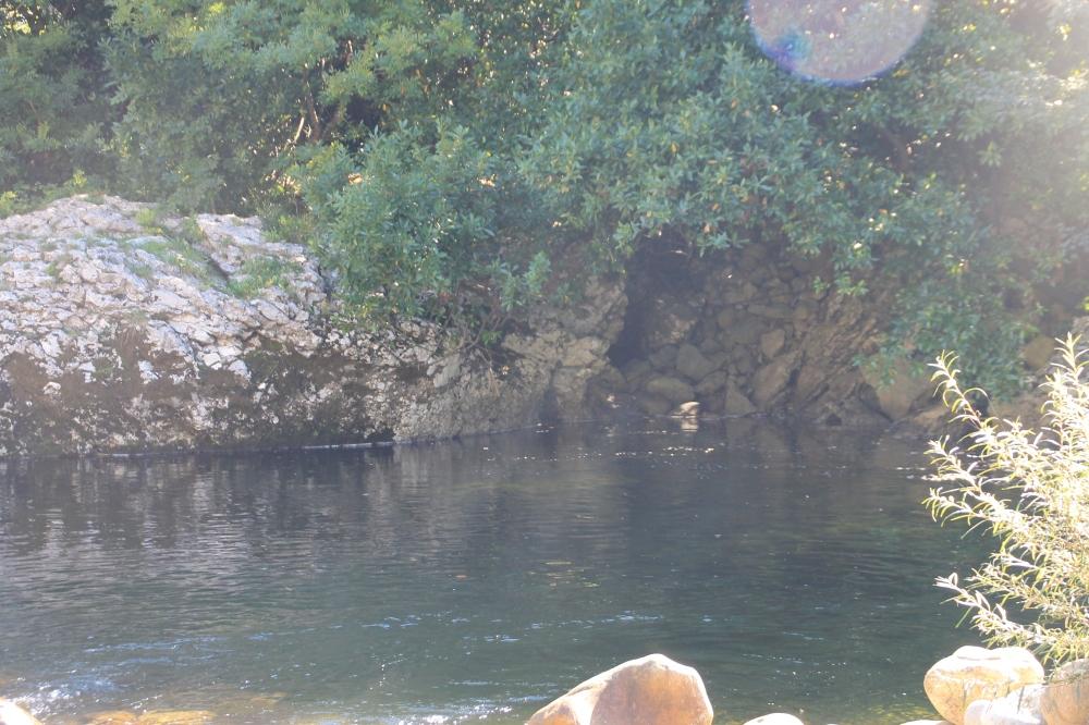 Río Asón 10