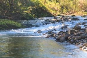Río Asón 11