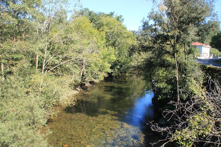 Río Asón (3)